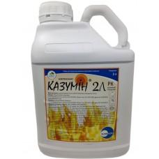 Казумін